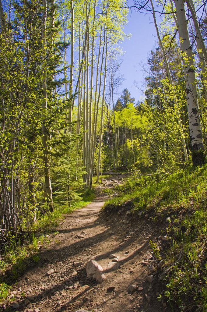 santa fe national forest trail
