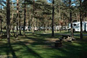 Kalyumet Camping Cabins & RV Park